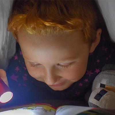 02.03.2021 – Setkání členů pracovní skupiny čtenářské gramotnosti k rozvoji potenciálu každého žáka